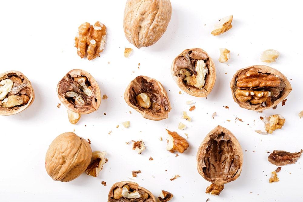 Nuts. Walnuts